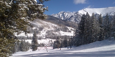 I love a nice sunny day of snowboarding at Copper Mountain. They offer plenty of powder stashes and great terrain parks. Look for the