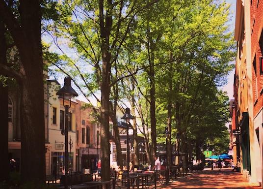 Charlottesville, Virginia, USA