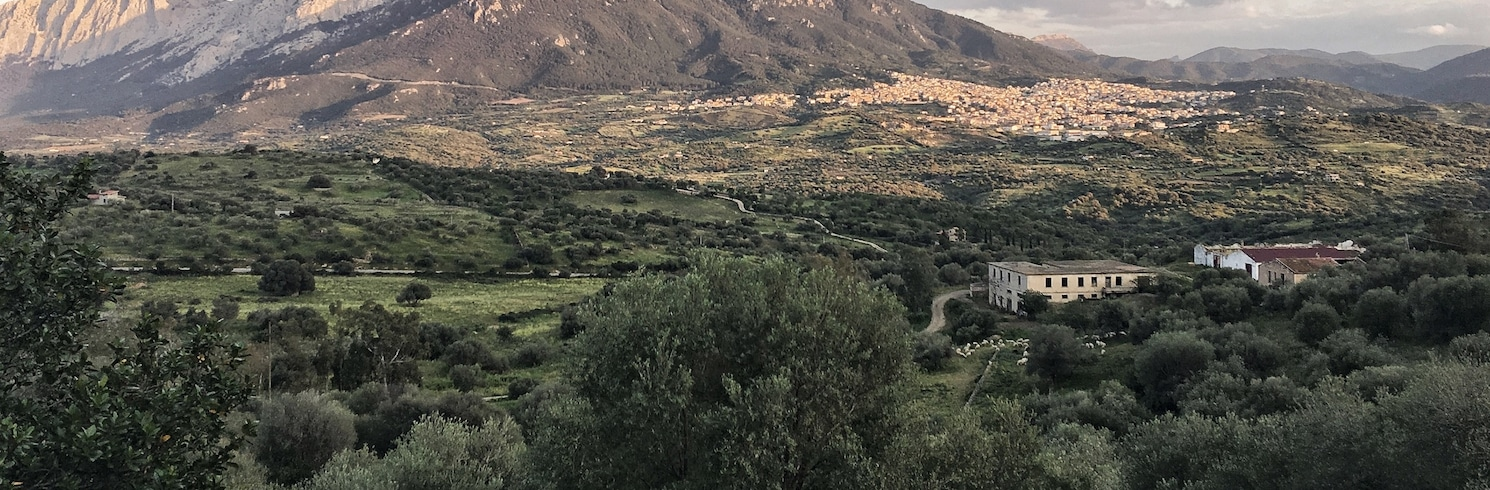 Oliena, Itálie