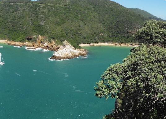 كنيسنا, جنوب أفريقيا