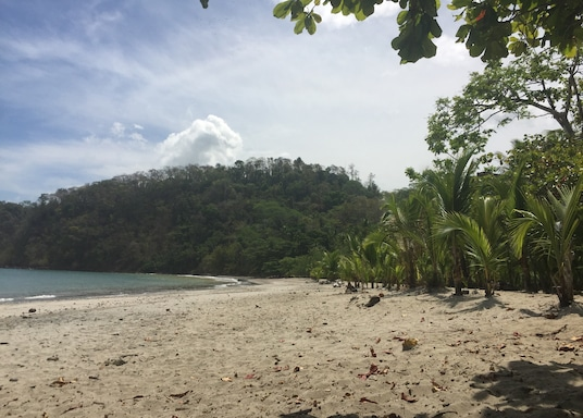 بونتا ليونا, كوستاريكا