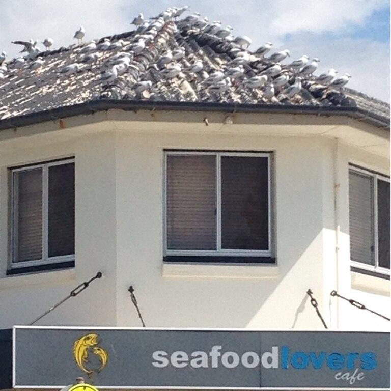 Margate, Brisbane, Queensland, Australië