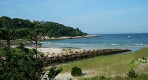 Seagull Beach