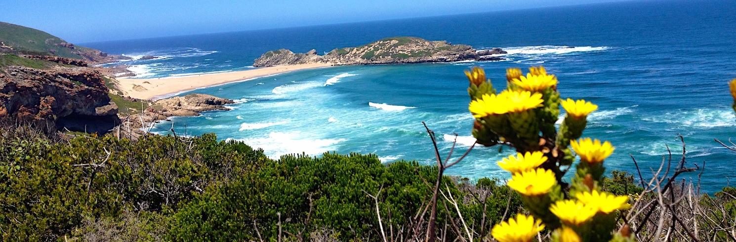 Plettenberg Bay, Dienvidāfrika (DĀR)