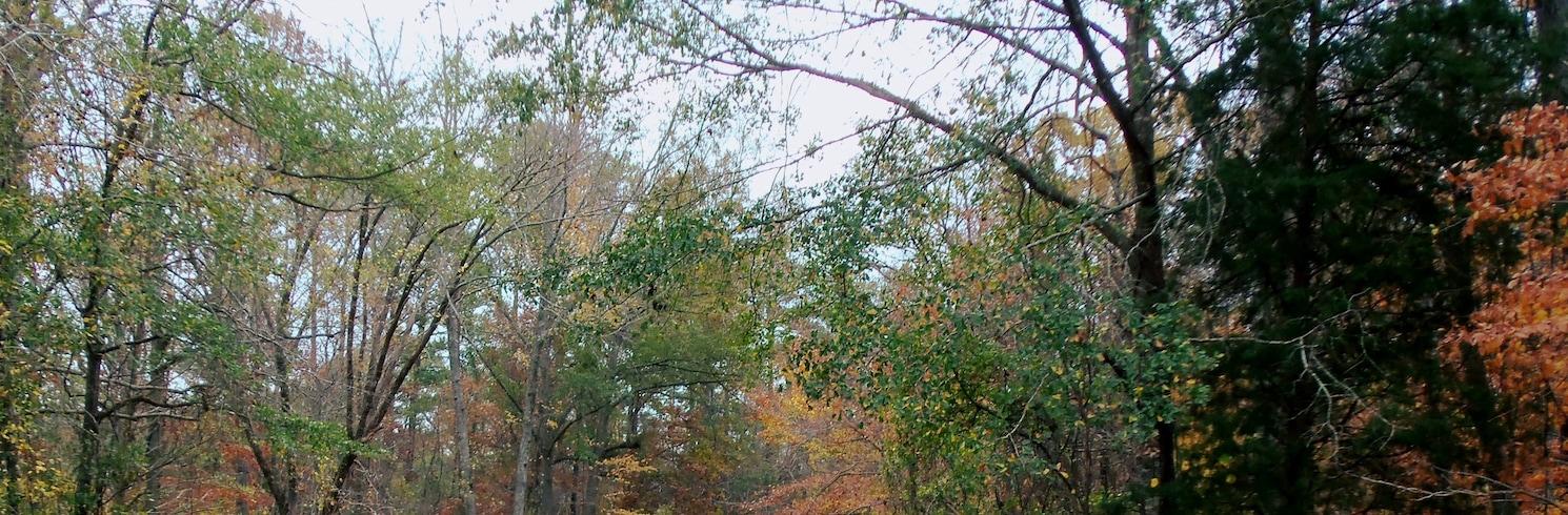 Tuscaloosa (e arredores), Alabama, Estados Unidos