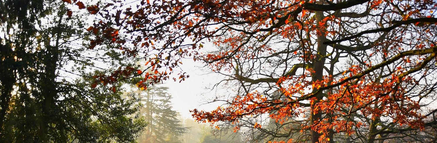 Cradley Heath, Großbritannien