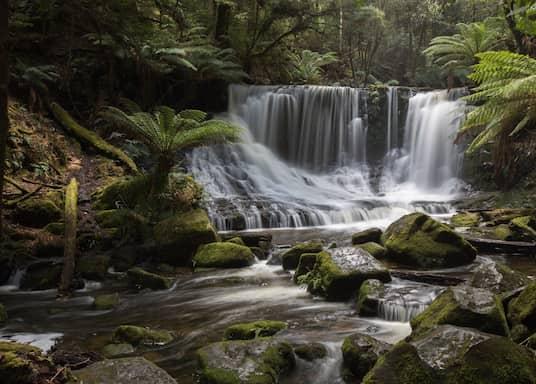 Mount Field, Tasmania, Australia