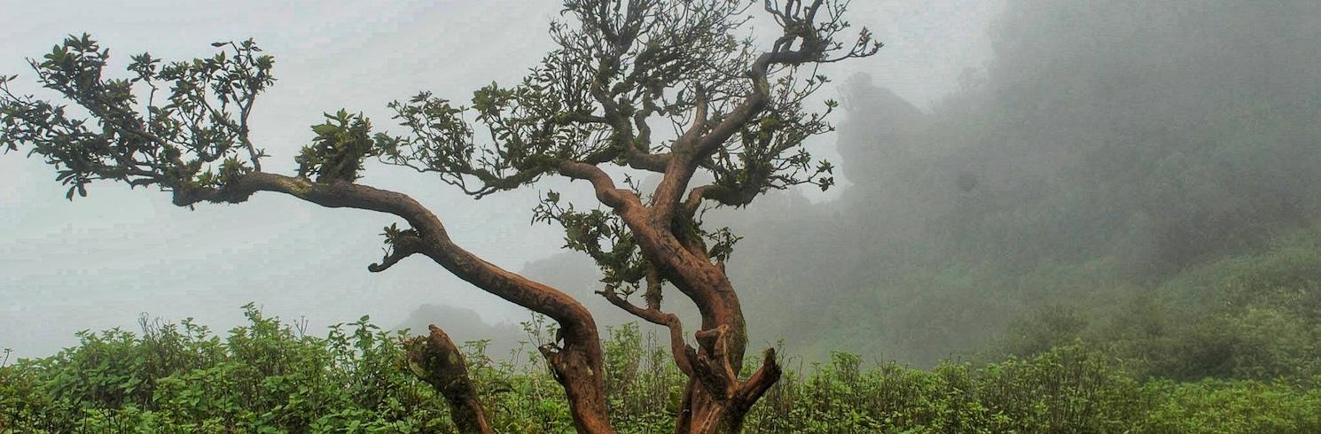 Шиккамагалуру, Индия