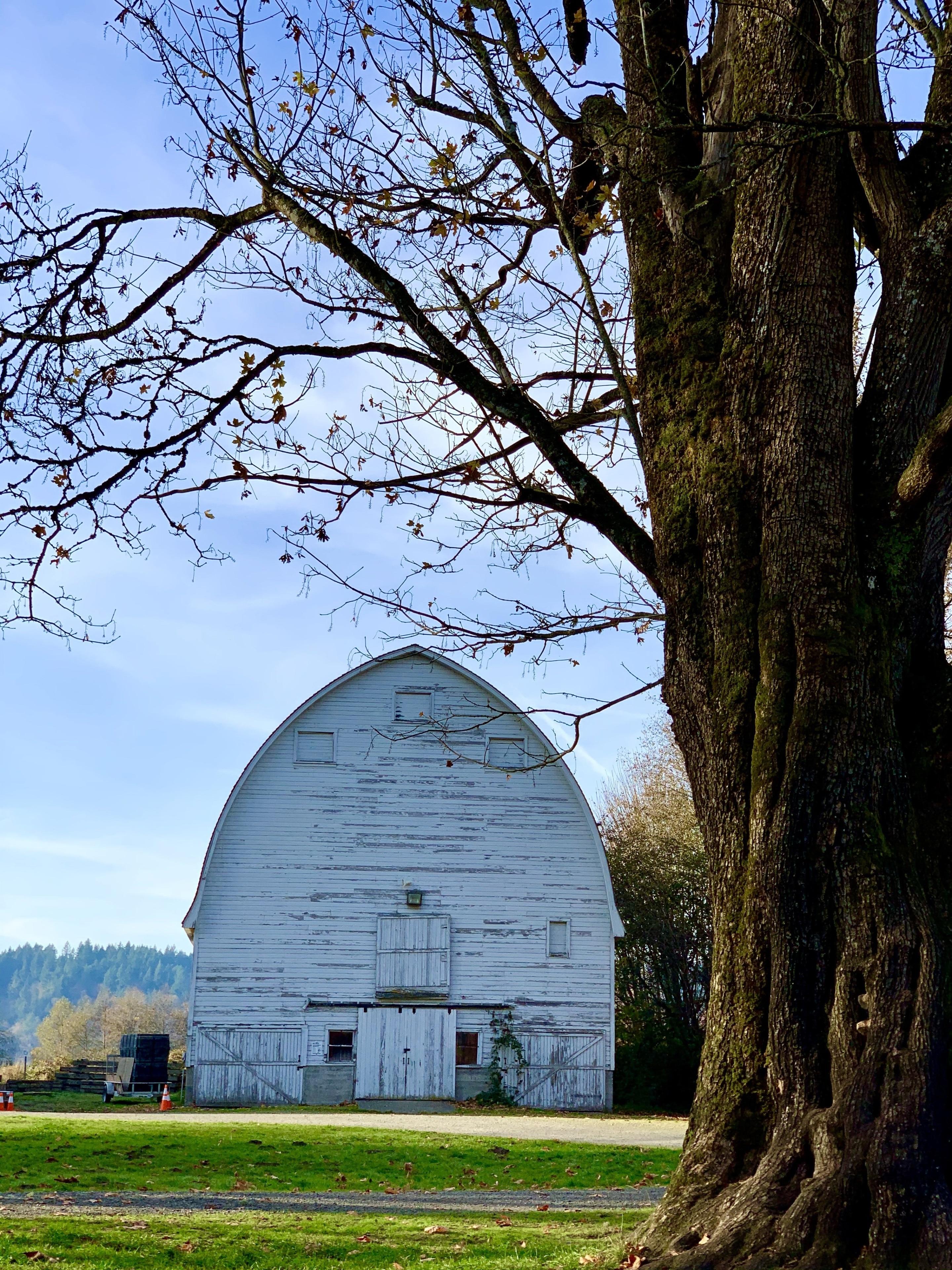 Lacey, Washington, United States of America