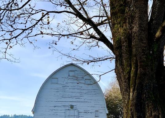 Lacey, Washington, USA