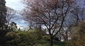 Jardin botanique Geilston Garden