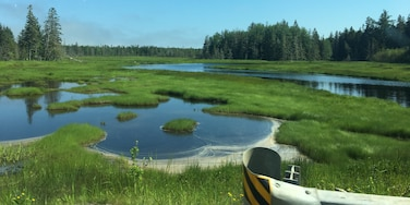 #LifeAtExpedia  Driving around Maine there is so much beauty to see and no way to capture it in a picture