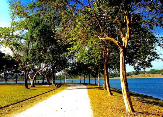 Šiaurės rytų regionas, Singapūras
