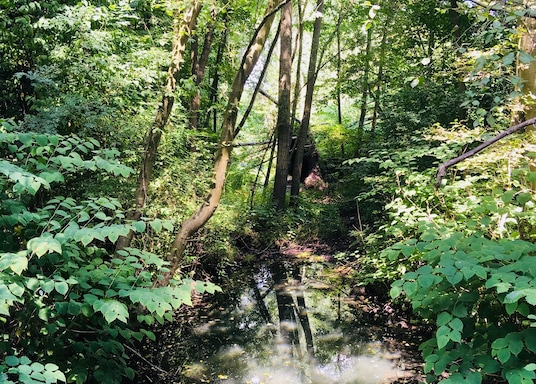 Mülheim an der Ruhr, Duitsland
