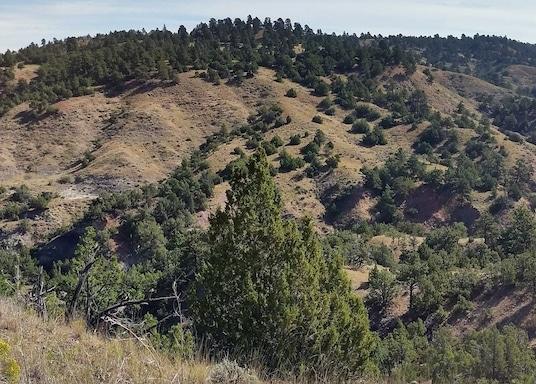 Gillette, Wyoming, Sjedinjene Američke Države