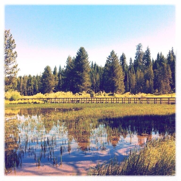 Westwood, Kalifornien, USA