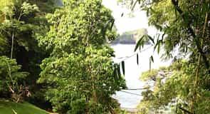 Baie de Macqueripe