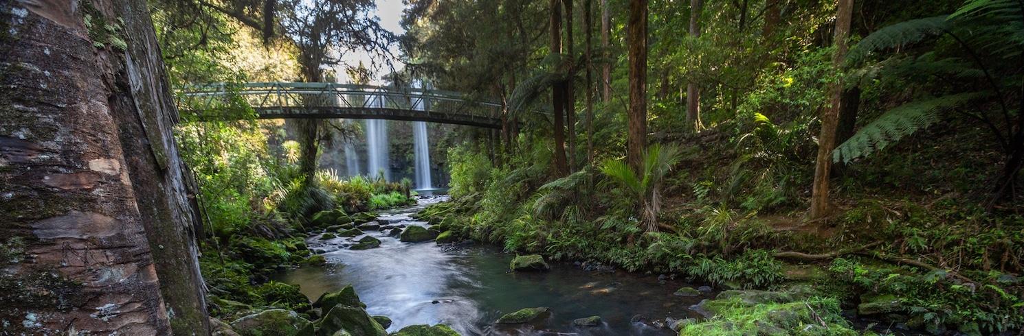 晃加雷, 紐西蘭
