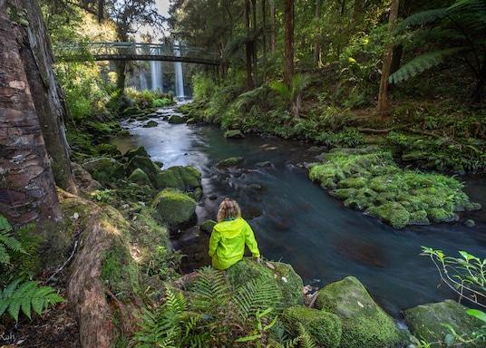 هوانجاراي, نيوزيلندا