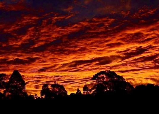 辛格爾頓, 新南威爾斯, 澳洲