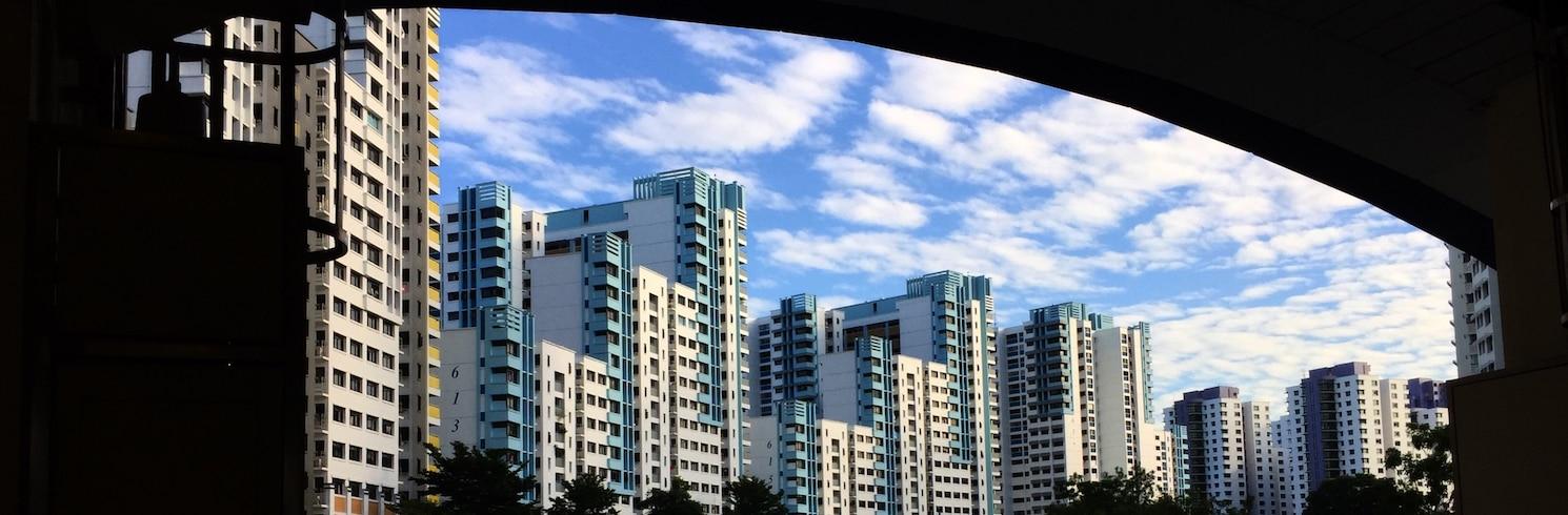 סינגפור, סינגפור