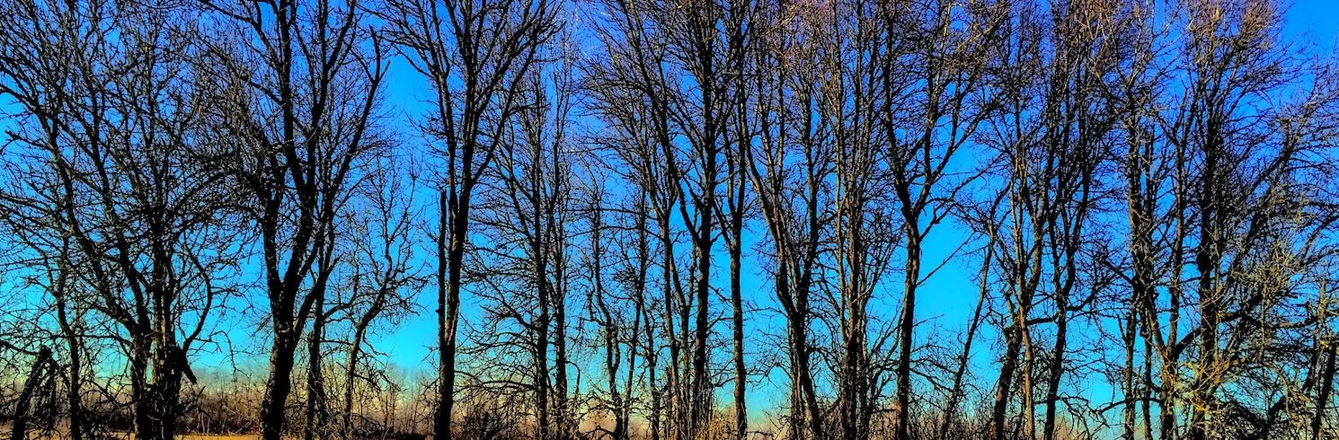 Ridgefield, Vašingtona, Amerikas Savienotās Valstis