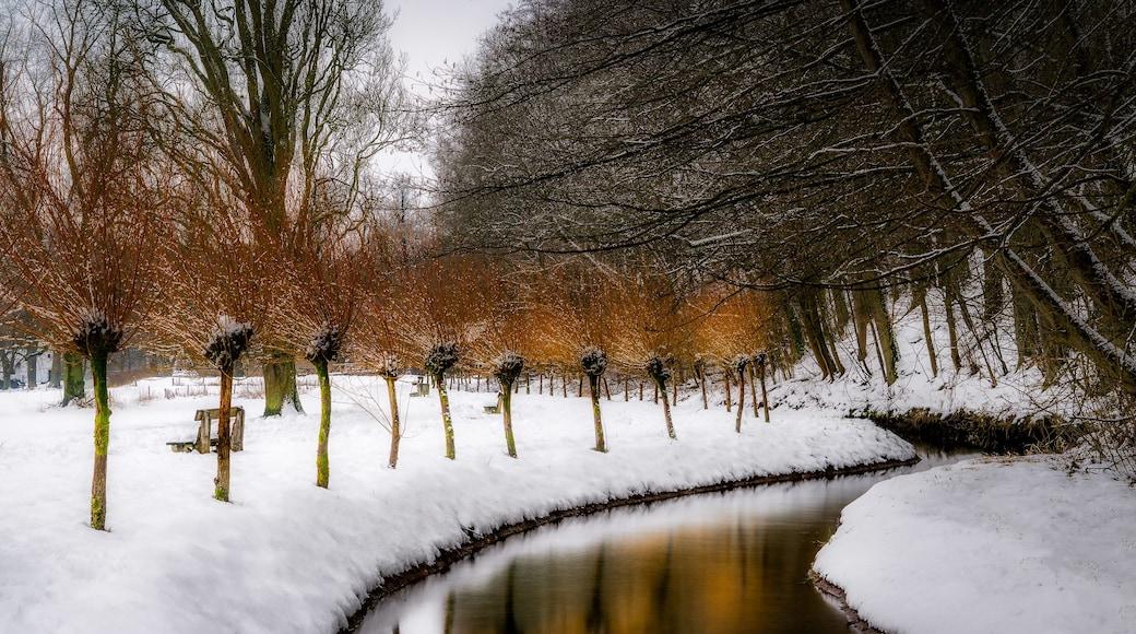 Photo by Jakub Bors