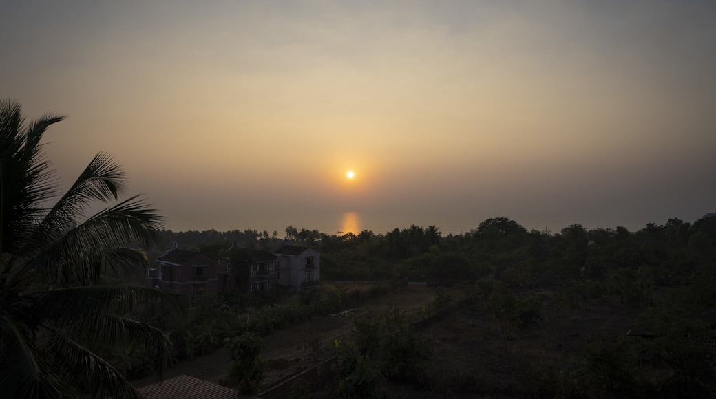 Photo by Vivek Kalura