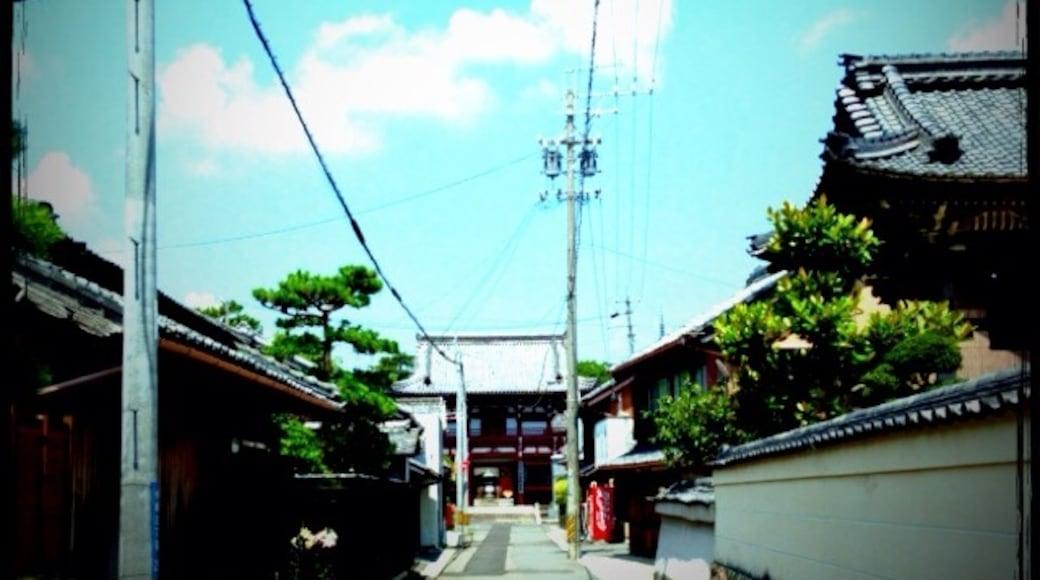 Photo de  Showji Higuchi