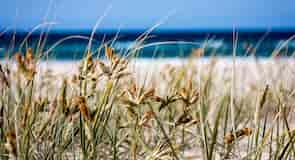 Bãi biển Kirra