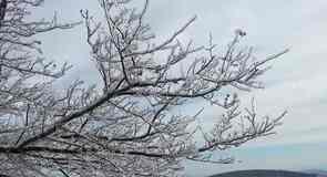 ウィンターグリーン リゾート (スキー場)