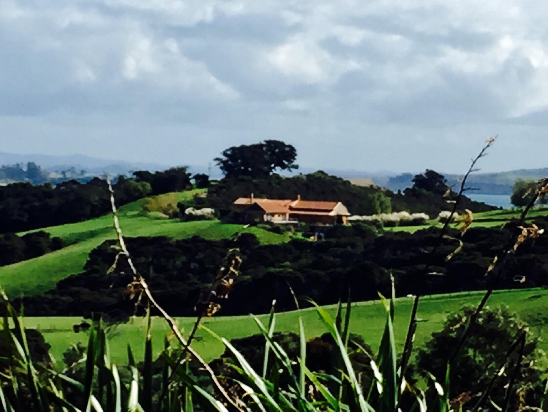 Weinberg Cable Bay Vineyard, Waiheke Island, Auckland Region, Neuseeland
