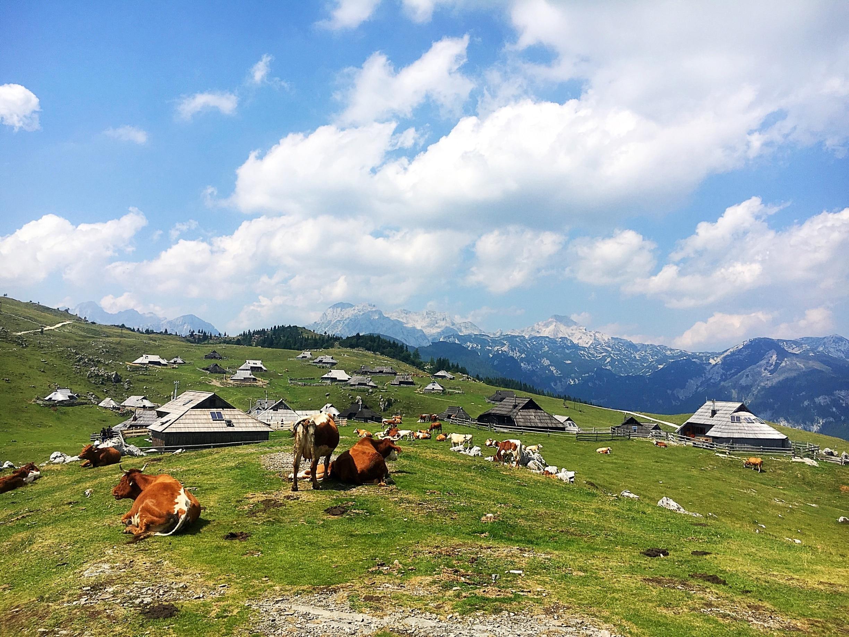 Kamnik, Slowenien
