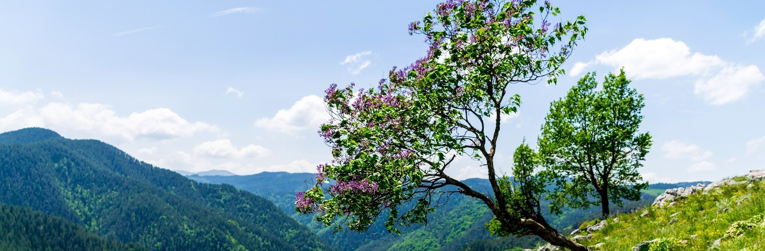 Borino, Bulgaria