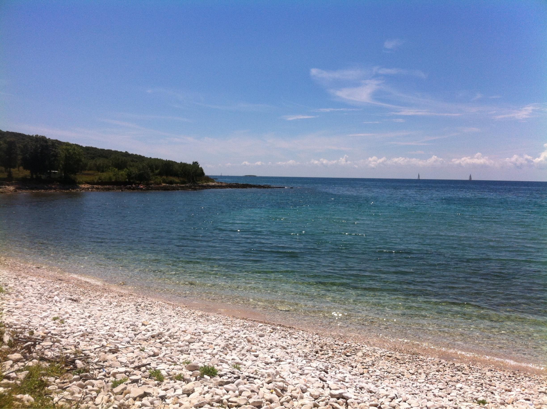 Posebni ornitološki rezervat Palud, Rovinj, Istria County, Croatia