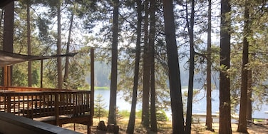 The morning at Camp Tulequoia in the Sequoia National Forest.