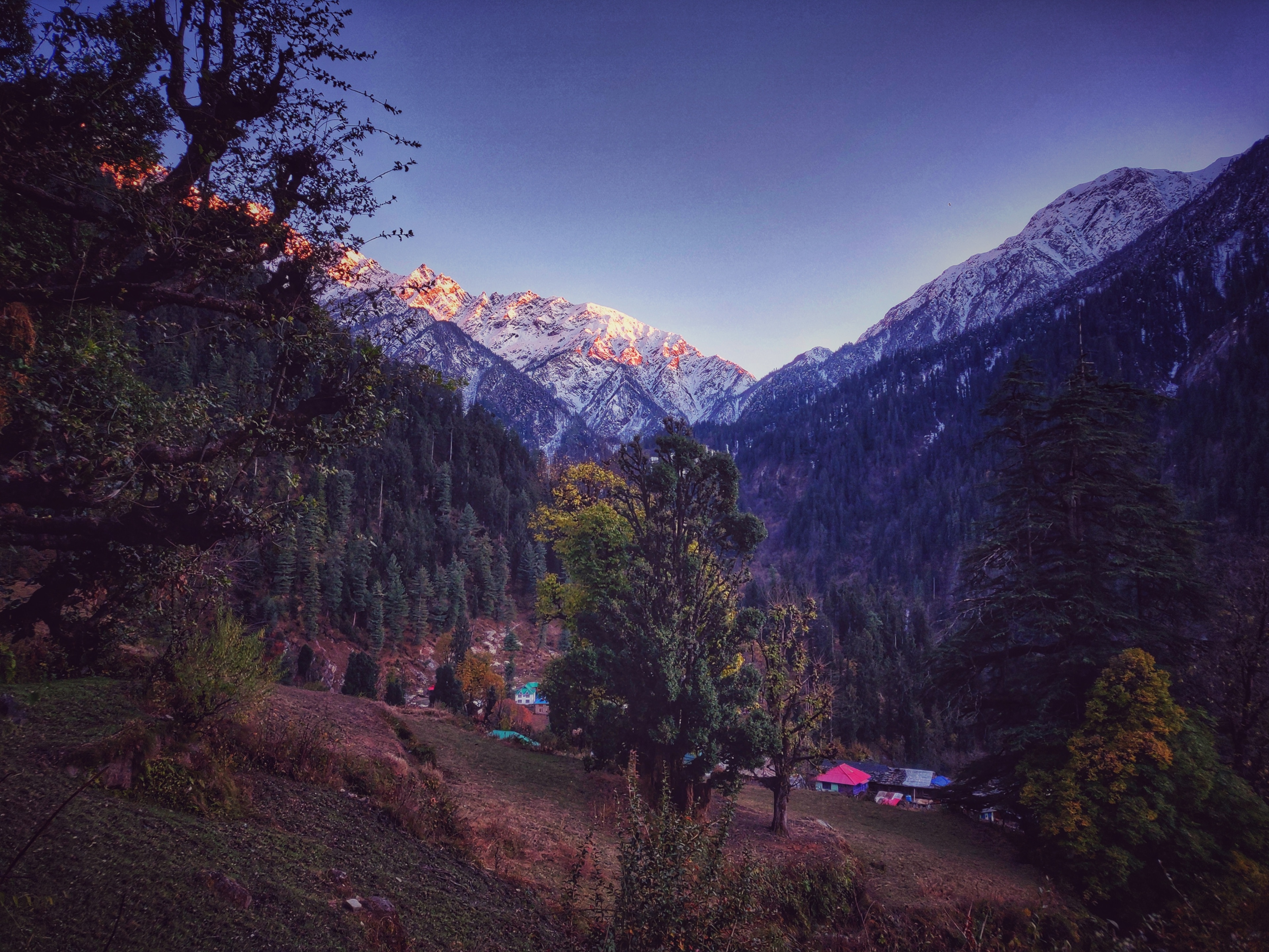 Karsog, Himachal Pradesh, Indien