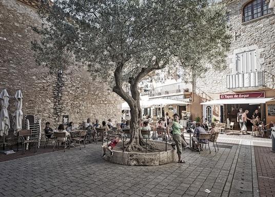 Mas Pinell, Spanien