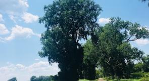 Sequoyah National Wildlife Refuge