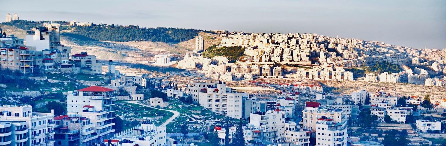 Betliejus, Palestina