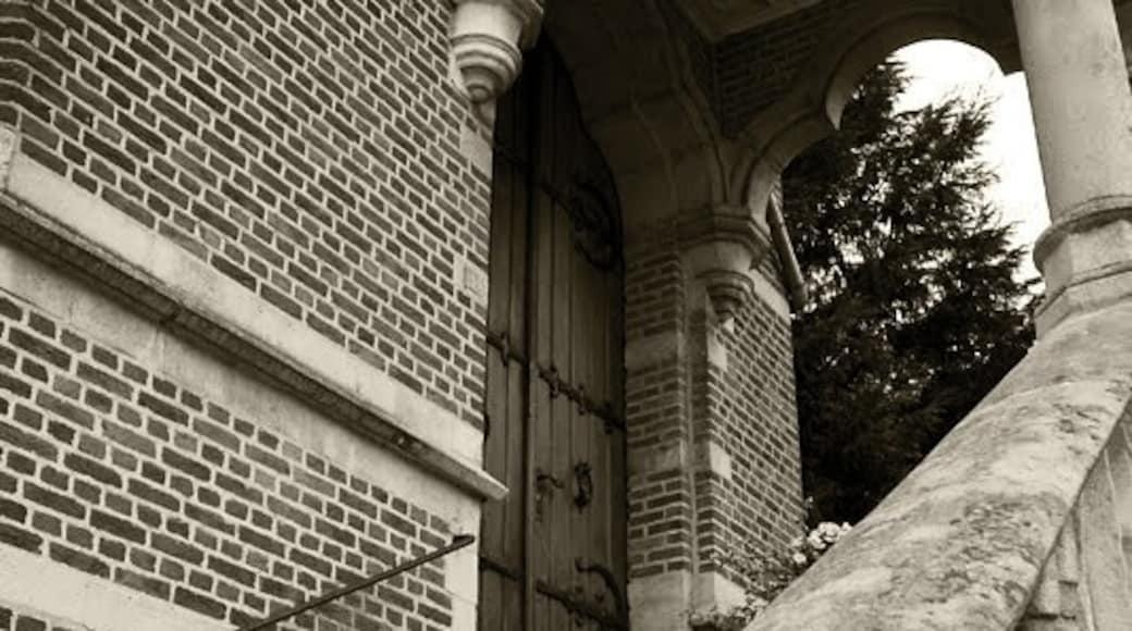 Foto di Peije van Klooster