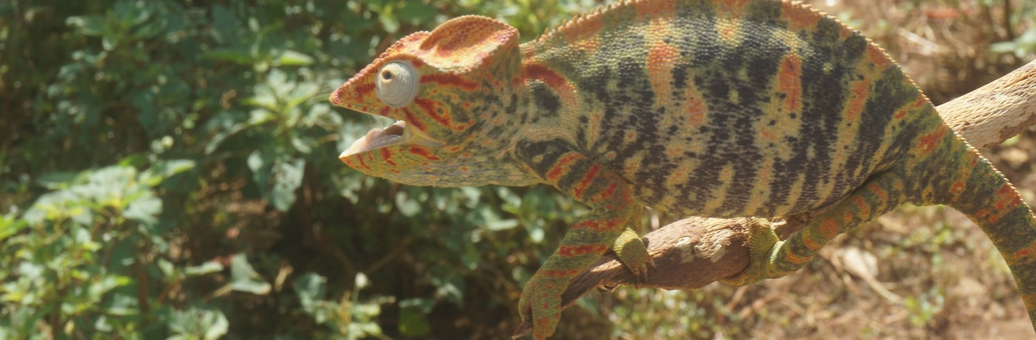 Antsiranana, Madagaskar