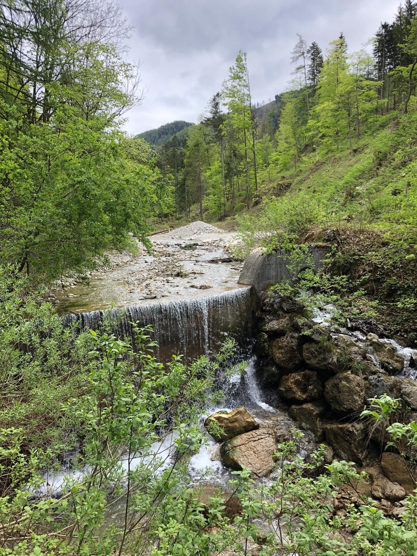 Faistenau, Salzburg State, Austria