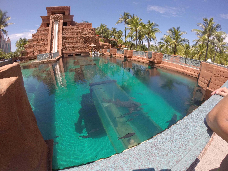 Atlantis Vacation Rentals Resort Rentals More Vrbo