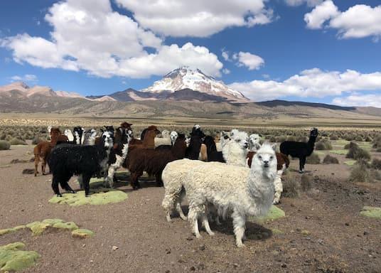 Oruro, Boliwia