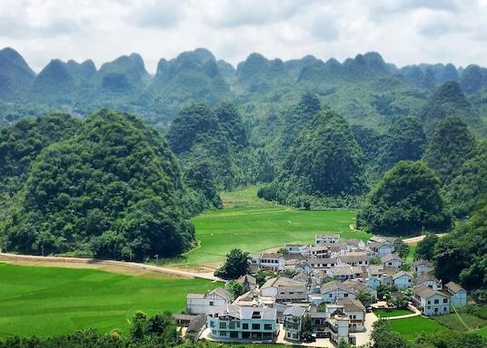 Mofenglin, Cina