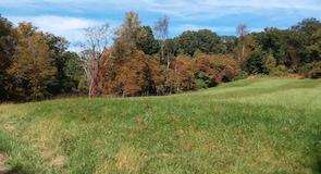 Rockefeller State Park Preserve