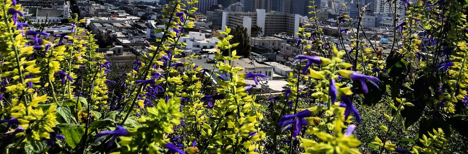 San Fransiskas, Kalifornija, Jungtinės Amerikos Valstijos
