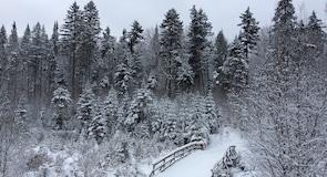 Val-David-Val-Morin Regional Park