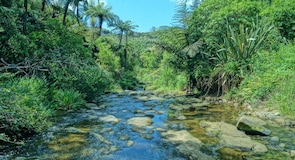 Owharoa-vízesés